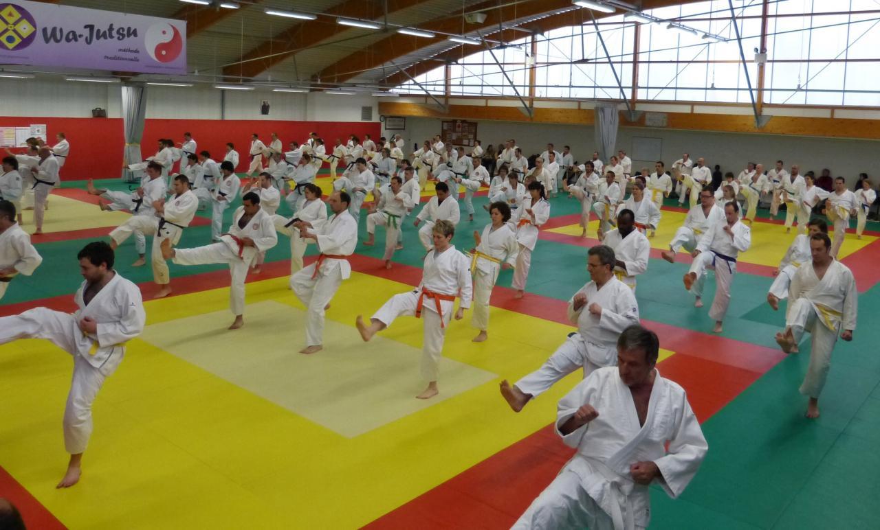 Entraînement  convivial (clubs Aquitaine) dojo Villeneuve sur lot, avril  2014